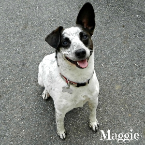 maggie may 3 sm